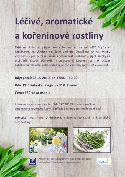 plakát Léčivé, aromatické a kořeninové rostliny
