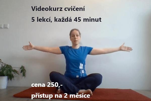 Plakát akce: Videokurz cvičení (nejen) pro těhotné